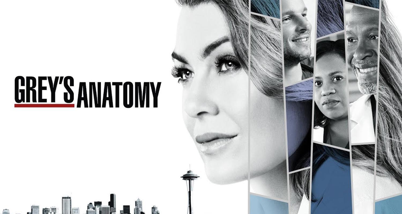 Greys Anatomy Season 14 On Channel 7 Who Magazine