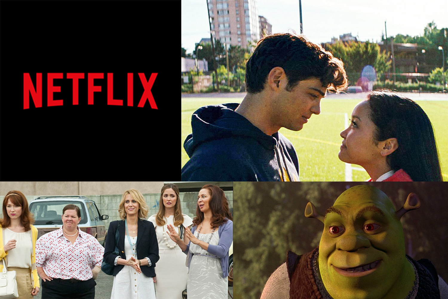 The Best Netflix Movies To Watch After A Bad Day Who